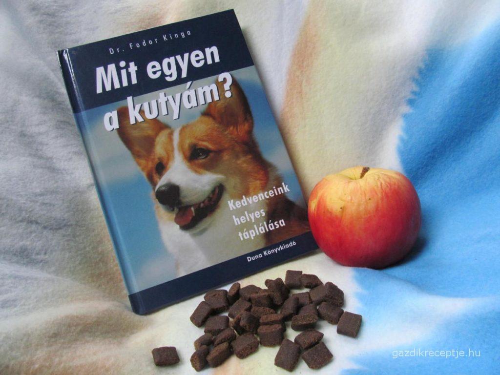 Mit egyen a kutyám? könyv