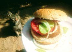 Koko hamburger